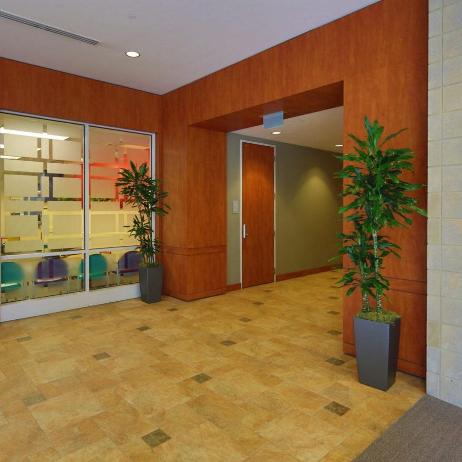 Medical Plaza at Rex